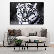 Weißer Leopard