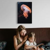 Spalvinga medūza