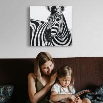 Schwarz-weißes Zebra