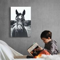 Treues Pferd
