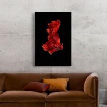 Raudona žuvis