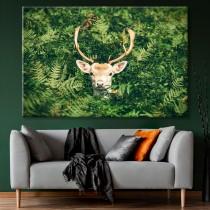 Hjort i buskarna