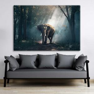 Elefant Tropenwald