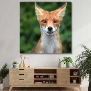 Listiger Fuchs