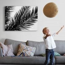 Palmės lapas