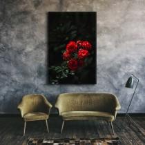 Розы в природе
