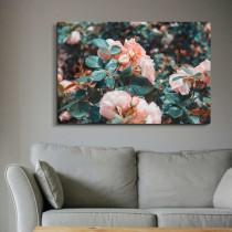 Rožu Dārzs