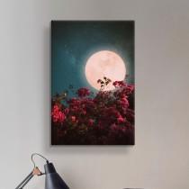 Mēness Gaisma